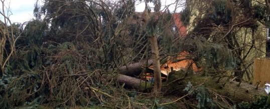 Zahlreiche Einsätze wegen Sturmschäden