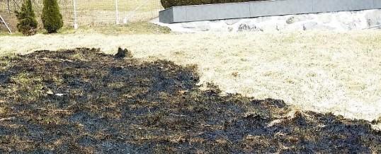 Rasenbrand – Nachtrag