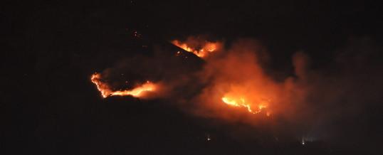 Großer Waldbrand in Absam